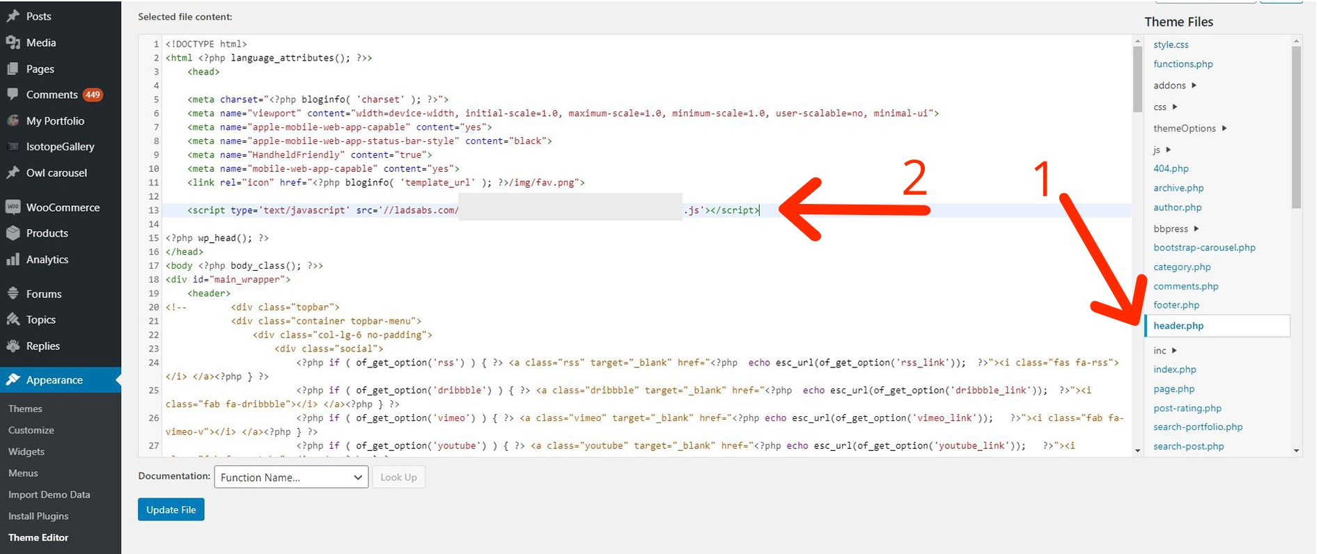 2. Paste the code according to the Adsterra instructions