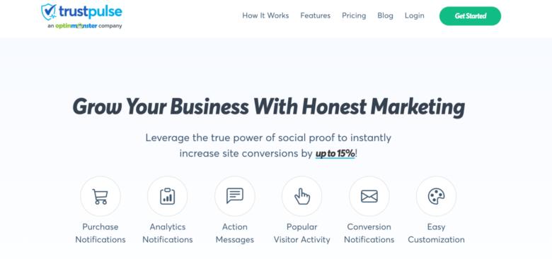 TrustPulse home page