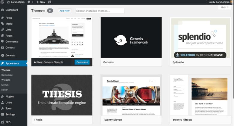 Visão geral da seção de temas do WordPress